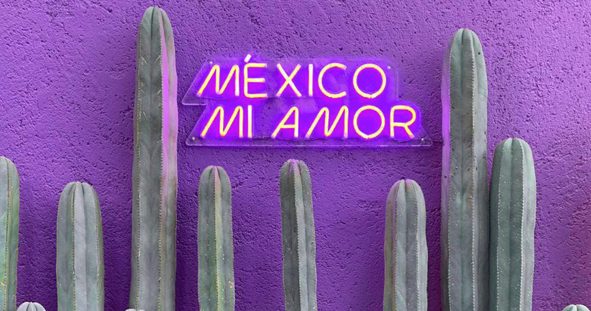 Parede roxa com letreiro luminoso escrito México Mi Amor