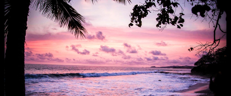 A beira de uma praia com ondas pequenas, coqueiros e plantas e o céu em tons de roxo e rosa.