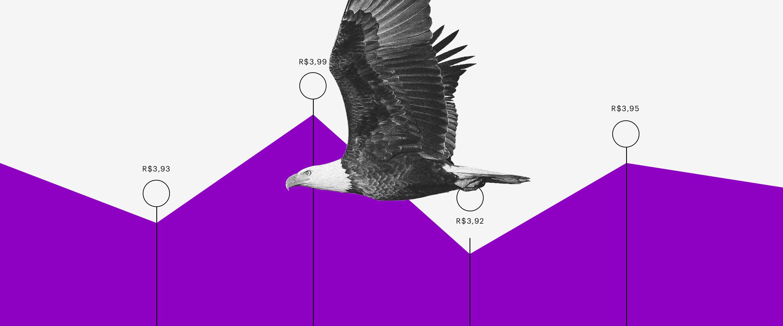 Dólar PTAX: uma água voa sobre um gráfico roxo com altos e baixos.