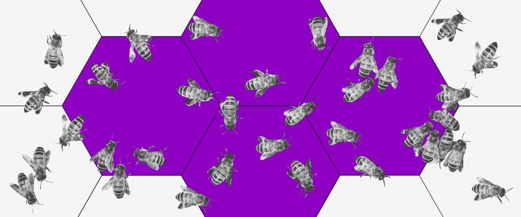Nova MP trabalhista: imagem de uma colmeia roxa com várias abelhas espalhadas
