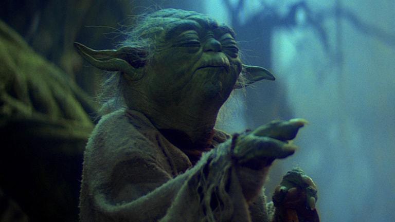 Foto do personagem mestre Yoda, sa saga Star Wars, em cena em um dos filmes.